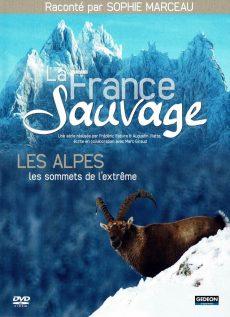 Les Alpes, sommets de l'extrême - PROJECTION GRATUITE